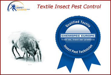 Textile insect pest control dundee