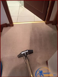 dundee carpet cleaning emergency stain treatment